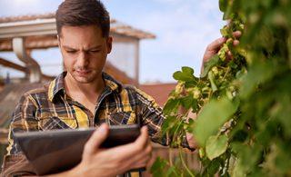 Editel Adria i Carlsberg Croatia u projektu e-poslovanja